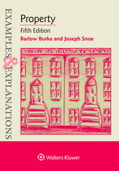 Cover image of Examples & Explanations for Property, Fifth Edition