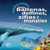 Mamíferos en peligro. Entre ballenas, delfines, zifios y manatíes