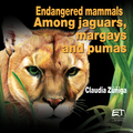 Endangered mammals: among jaguars, margays and pumas