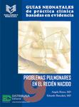 Guías neonatales de práctica clínica basadas en evidencia. Guía 9. Problemas pulmonares en el recién nacido.