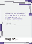 Formación de profesores de matemáticas y práctica de aula: conceptos y técnicas curriculares